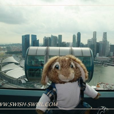 Себастьян на Сингапурском Колесе обозрения